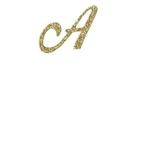 Single Initial Gold – Included
