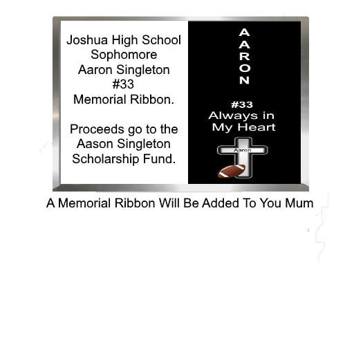 Aaron Singleton Memorial Ribbon