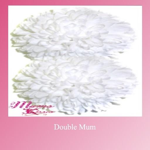 Double Mum
